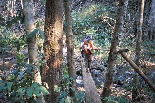 In Thailands Dschungel ist gutes Schuhwerk unverzichtbar   Bild: © Hemera Technologies/AbleStock.com/Thinkstock
