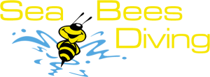 Tauchen in Thailand mit Sea Bees
